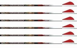 Easton Bloodline Carbon 240. 6pk. Inkl 1stk lysnock.